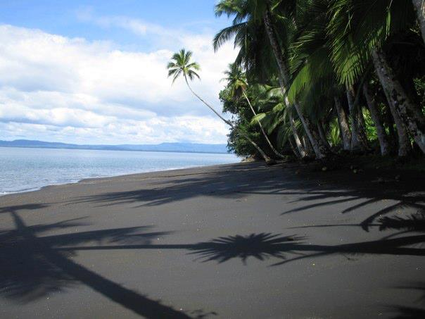 costa ricas black sand beaches lands in love