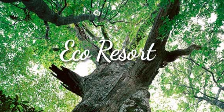 Eco Resort
